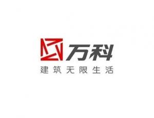 上海万科集团